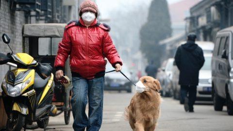 Censurato-il-documentario-sull'inquinamento-in-Cina1