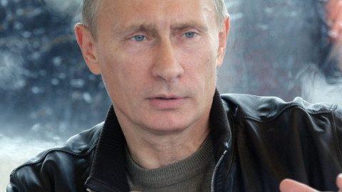 Putin-GMO