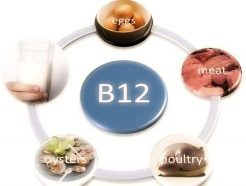 vitamina-b12-alimenti